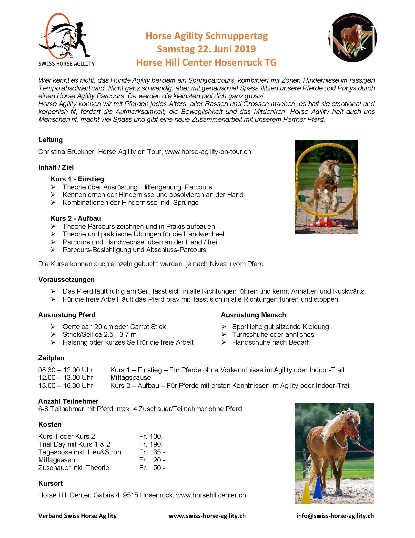 Horse Agility Schnuppertag Horsehillcenter TG Swiss Horse